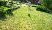 Zahradní jezírko před výkopem