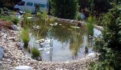 zahradní jezírko rok po realizaci